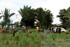 Ibama sofre emboscada em Rondonia ao tentar impedir desmatamento 01