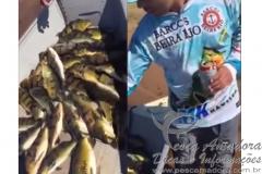 Integrante_da_equipe_beira_rio_mostra_peixes_capturados_durante_torneio_no_Parana