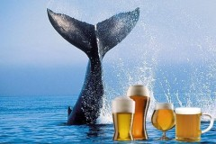 Islandia lanca cerveja a base de testiculos de baleia defumado