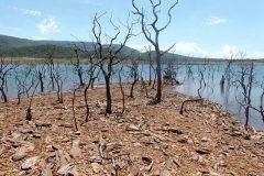 Lago Serra da Mesa registra volume mais baixos dos ultimos 10 anos e prejudica o turismo 2
