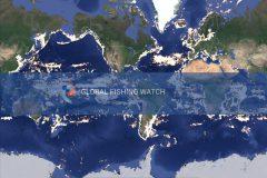 leonardo-dicaprio-apresenta-sistema-para-combater-a-pesca-ilegal-nos-oceanos