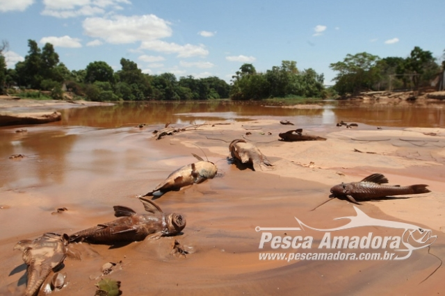 mpf-quer-que-samarco-pague-fiscalizacao-contra-pesca-na-bacia-do-rio-doce