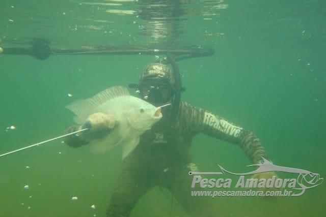 Mapa e Ibama negam alteracao de normas sobre a pesca subaquatica 2