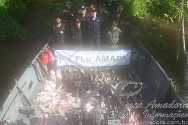 Marinha apreende animais silvestres e peixes no AM
