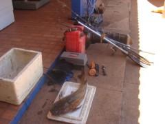 Material ilegal de pesca apreendido em Rochedo-MS (Foto: PMA-MS)