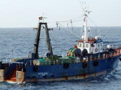 Navio de pesca de arrasto em Portugal