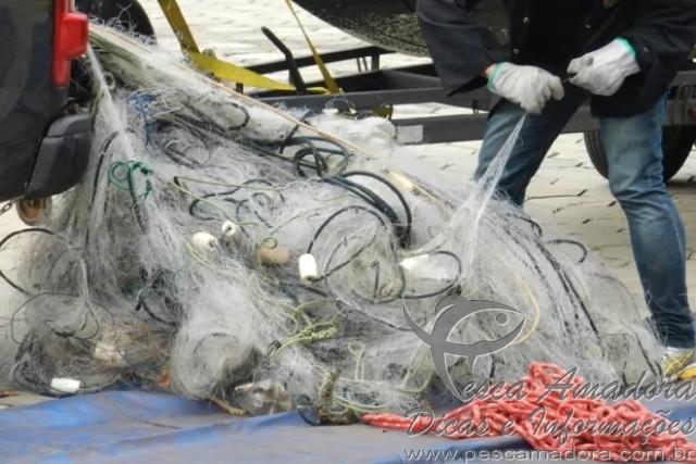 PF apreende cerca de 400 kg de peixes e 3 km de redes no Rio Parana 3