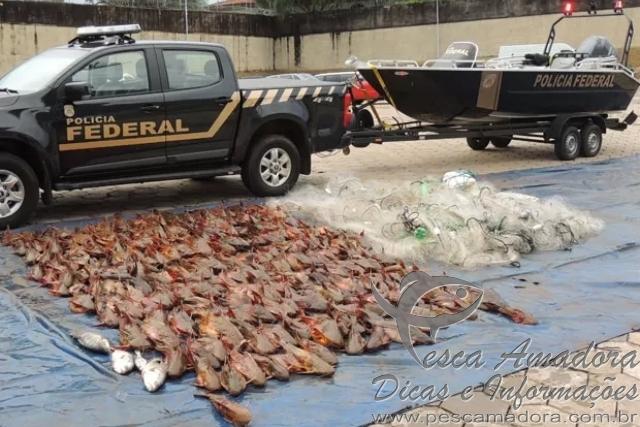 PF apreende cerca de 400 kg de peixes e 3 km de redes no Rio Parana