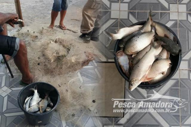 PM prende homem por pesca ilegal e apreende 12 redes na Paraiba