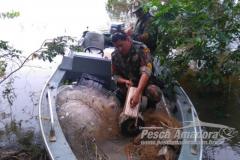 PMA apreende 1 km de redes de pesca  tres espinheis e 192 anzois de galho em MS 5