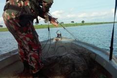 PMA apreende 1000 m de rede que cercava foz de corrego com o Rio Parana em MS