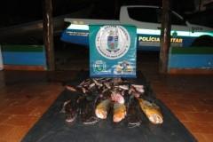 PMA apreende 107 kg de pescado e autua sete por transporte ilegal em MS