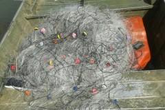 PMA apreende 12 redes e 50 kg de pescado na Serra do Facao em Goias