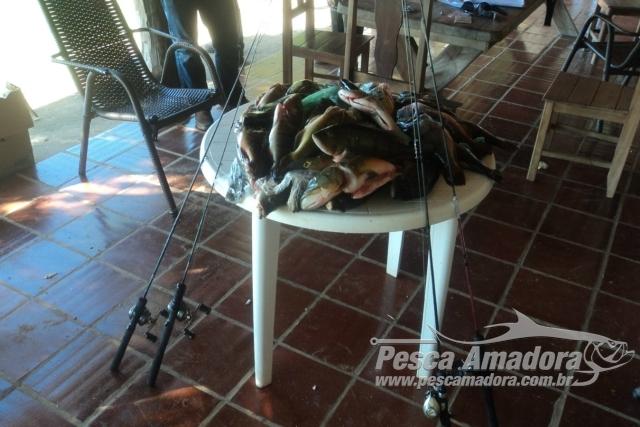 PMA apreende 14 kg de pescado e autua sete turistas por pesca ilegal em MS