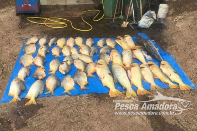 pma-apreende-140-kg-de-pescado-durante-fiscalizacao-no-rio-vermelho-em-mt