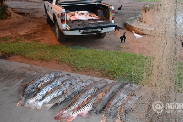 PMA apreende 175 kg de pescado ilegal no Rio Itiquira-MT 2