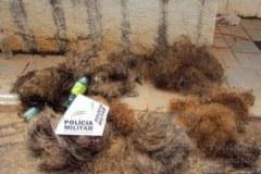 PMA apreende 18 redes durante fiscalizacao em Luz-MG