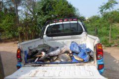pma-apreende-185-kg-de-pescado-e-multa-pescador-profissional-em-r-4-mil-em-ms