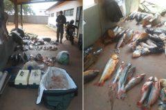 PMA apreende 195 kg de pescado e prende desembargador por pesca predatoria no MT 7