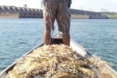 PMA apreende 30 redes durante fiscalizacao no lago da Usina Sergio Mota no rio Parana