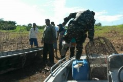 PMA apreende 351 redes e 84 kg de pescado durante o carnaval em GO 7