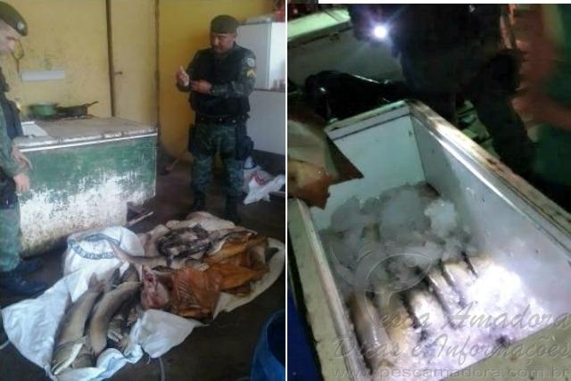 PMA apreende 360 kg de aruna pescados no defeso em Manaus-AM 3