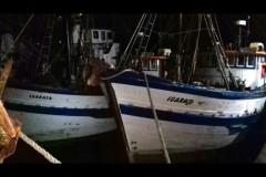PMA apreende 4 toneladas de pescado ilegal em area restrita em Guaruja-SP 3