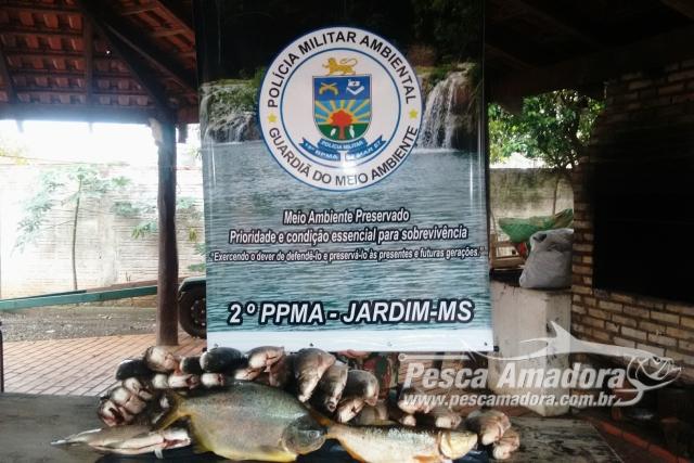 PMA apreende 42 kg de pescado ilegal durante fiscalizacao no MS