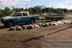 PMA apreende 4km de redes de pesca em barragem de hidreletrica no MS