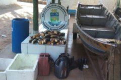 PMA apreende 60 kg de pescado ilegal e aplica R$ 4.800 em multas no MS