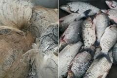 PMA apreende 90 kg de pescado e redes no Lago Serra di Facao-GO 3