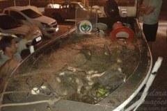 PMA apreende 92 kg de peixes e 300 metros de rede no Litoral do RS