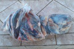 pma-apreende-pescado-e-autua-duas-pessoas-por-falta-de-licenca-em-ms