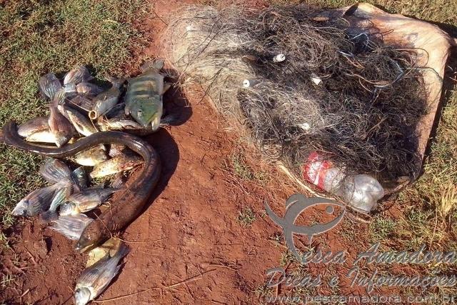 PMA apreende pescado e multa infratores no Rio Grande entre Minas Gerais e Sao Paulo