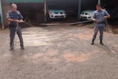 PMA apreende pescado e redes de pesca ilegal no Rio Tres Pontes no interior de SP 3