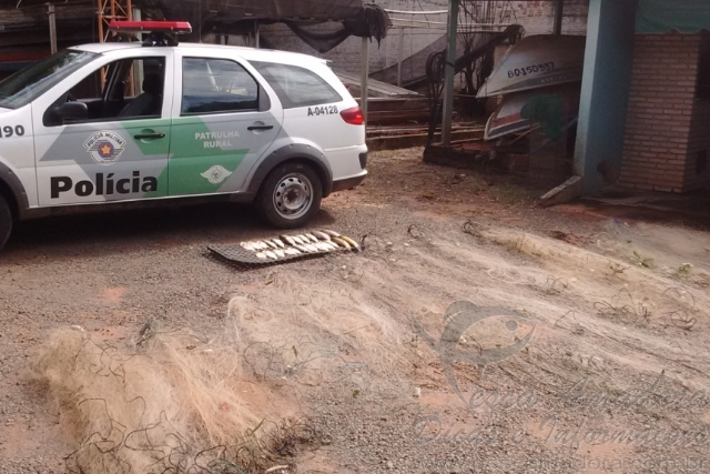 PMA apreende pescado e redes de pesca ilegal no Rio Tres Pontes no interior de SP 4