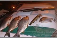 PMA apreende pescado ilegal e redes no Rio Corumbatai-PR 2