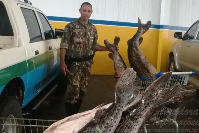PMA apreende pescado ilegal no MS