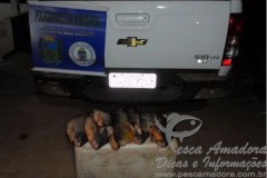 PMA apreende pescado ilegal no Rio Miranda-MS