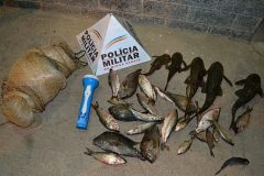 pma-apreende-rede-e-pescado-ilegal-em-muriae-mg