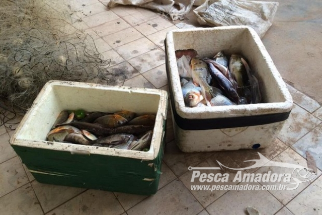 PMA apreende redes de pesca arpao e 45 kg de pescado ilegal no AP