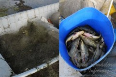 PMA apreende redes de pesca e pescado na represa de Chavantes 2