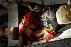 pma-apreende-redes-e-83-kg-de-pescado-ilegal-no-rio-coxim-em-ms-4