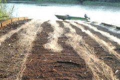pma-apreende-redes-e-pescado-ilegal-apos-denuncia-no-lago-de-itaipu-no-parana-4