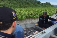 PMA apreendem 130 kg de pescado capturados irregularmente em MS