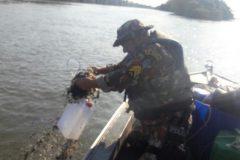 PMA autua dois por pesca ilegal apreende 300 m de redes e 110 anzois de galho no MS