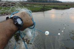 PMA autua duas pessoas por pesca ilegal no Rio Ivinhema-MS 2