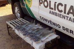 pma-autua-pescador-com-excesso-de-pescado-em-porto-camargo-no-parana