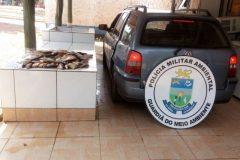 pma-autua-tres-em-r-21-por-transporte-de-30-kg-de-pescado-ilegal-em-ms