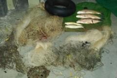 PMA autua tres homens por pesca irregular em Lucelia-SP